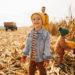 Pumpkin Picking Spots Near Weimar