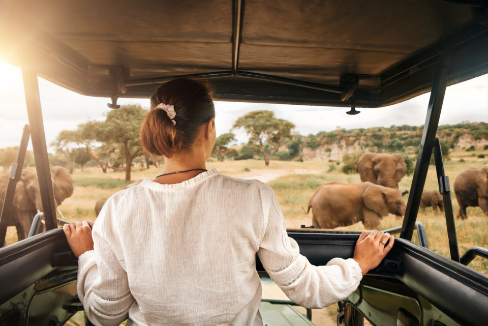 Woman tourist on a safari in Africa
